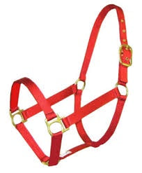 Plain Nylon Halter