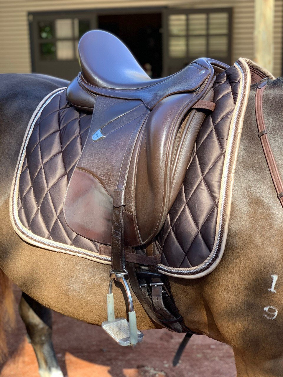 Biscotti Saddle Pad