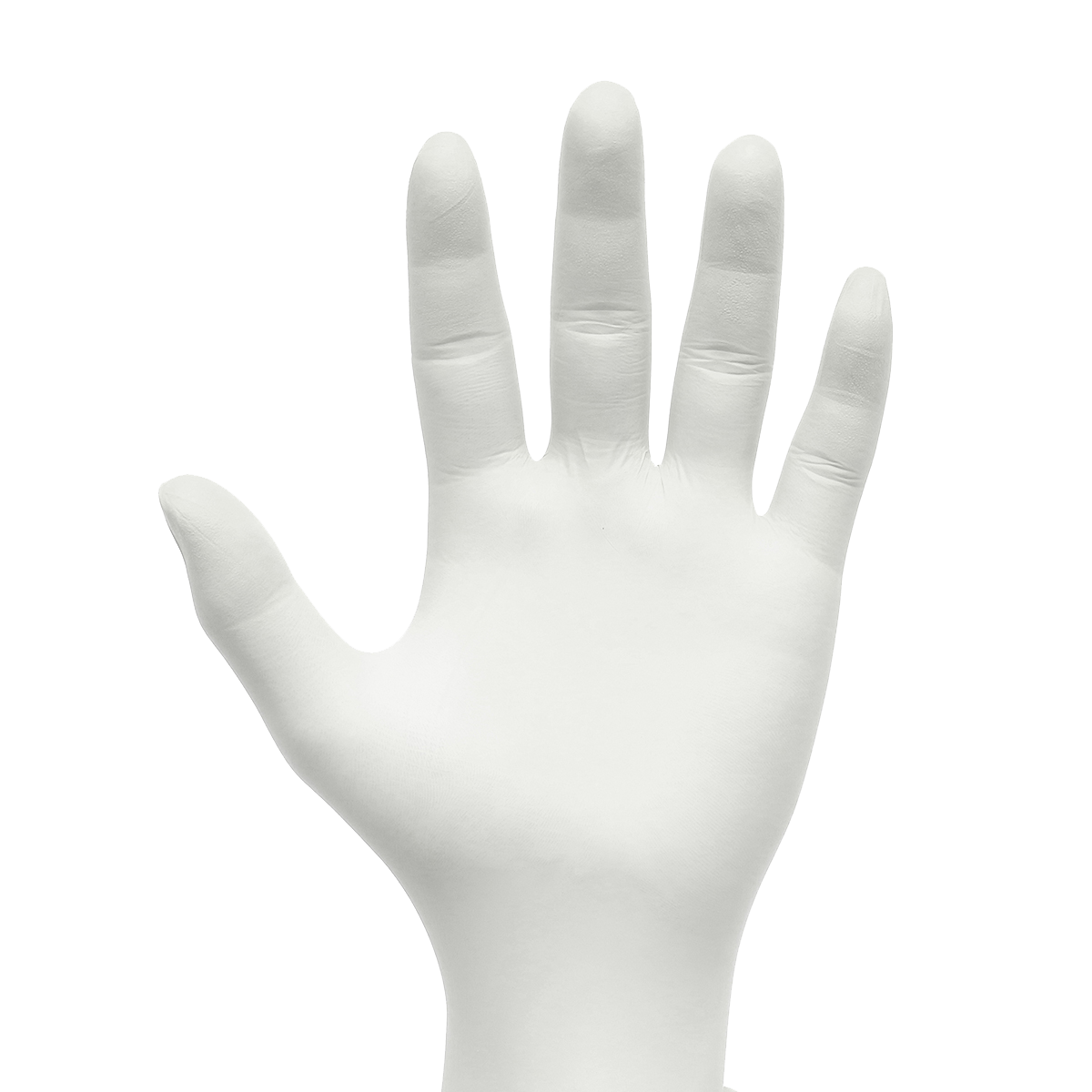 STRONG General Purpose Latex Gloves - Powder Free