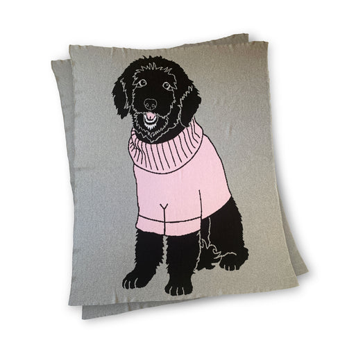 Dog wearing Sweater - Custom Knitted Blanket