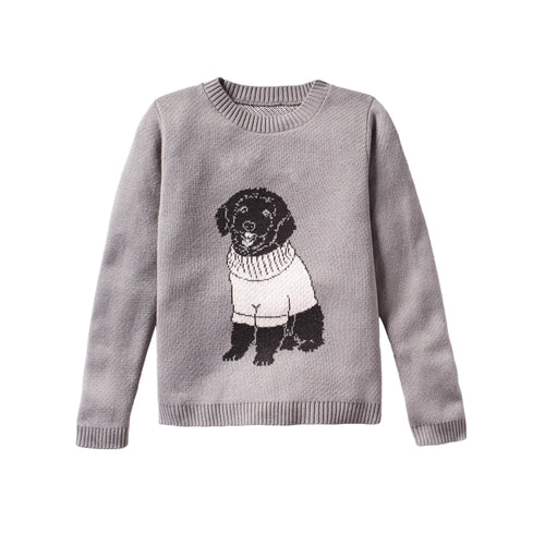 Dog Wearing Sweater - Custom Knitted Sweater