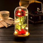 Enchanted Rose Lamp - Giftery