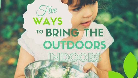 Five Ways to Bring in Outdoors Indoors