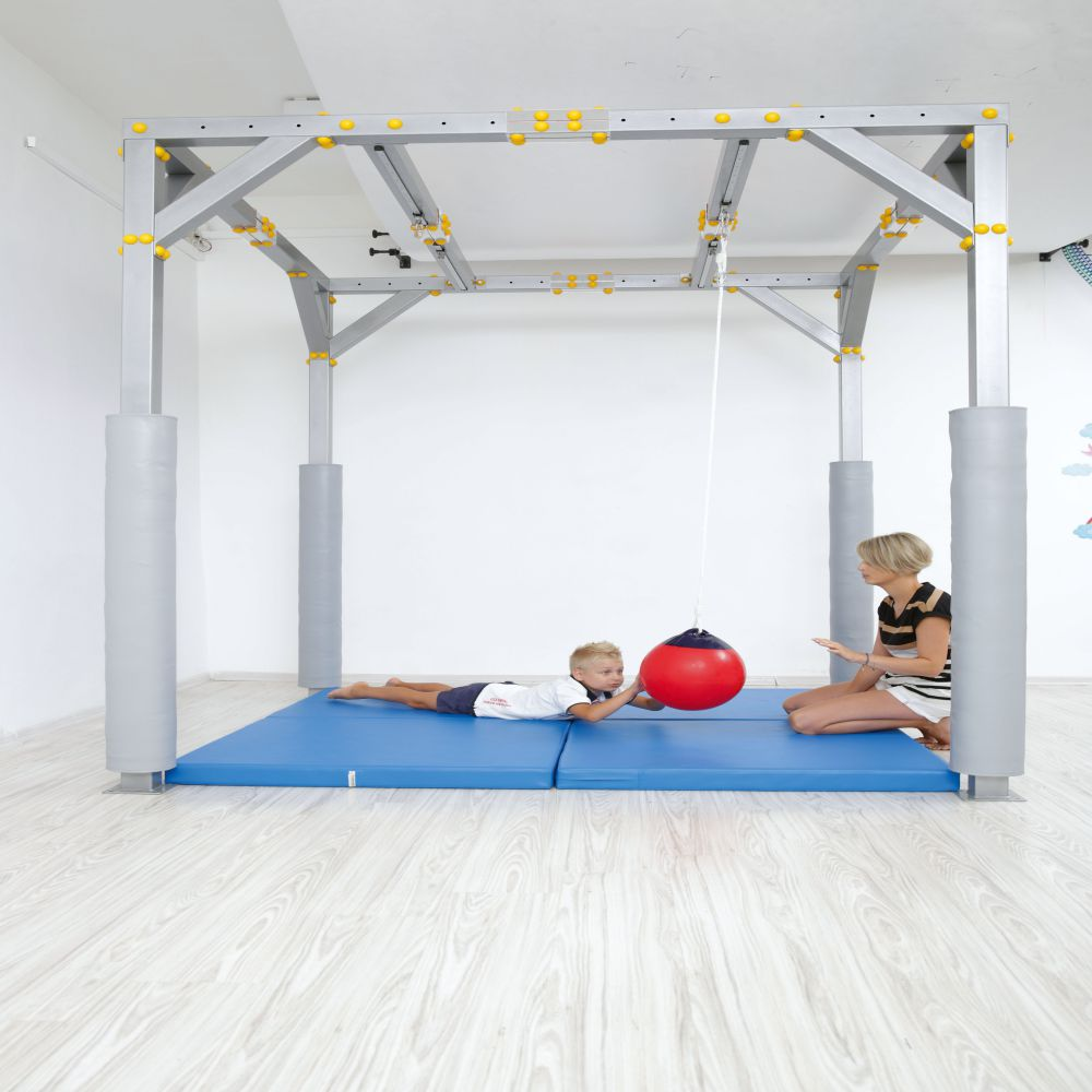 Hanging Therapy Ball