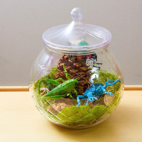 Magical Ingredient Storage Jars
