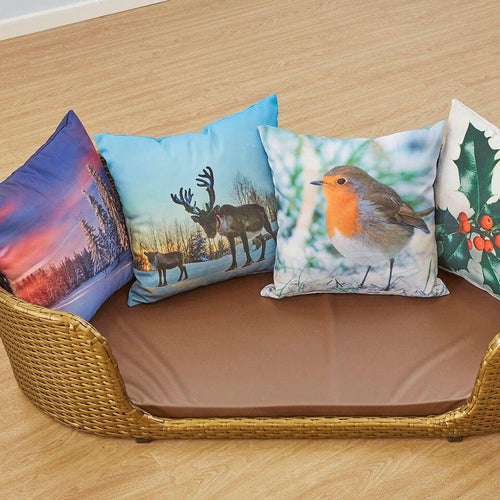 Seasons Cushions 4pk Spring