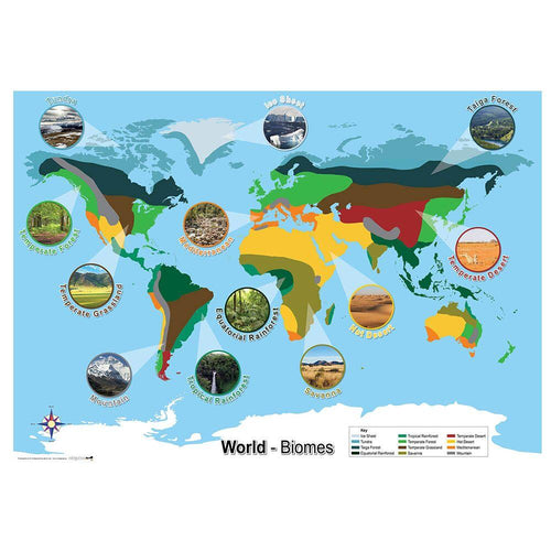 Biomes World Map