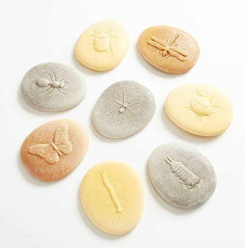Bug Discovery Stones 8pk