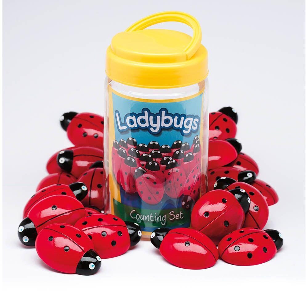 Ladybird Counters and Cards Multibuy