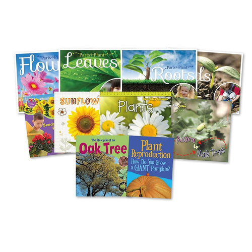 KS1 All About Plants Books 10pk