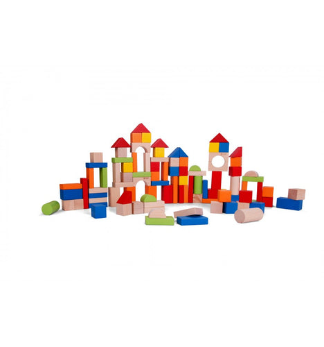 Blocks (100pcs)