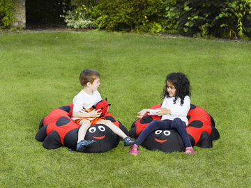 Duo Indoor / Outdoor Giant Ladybird Cushion