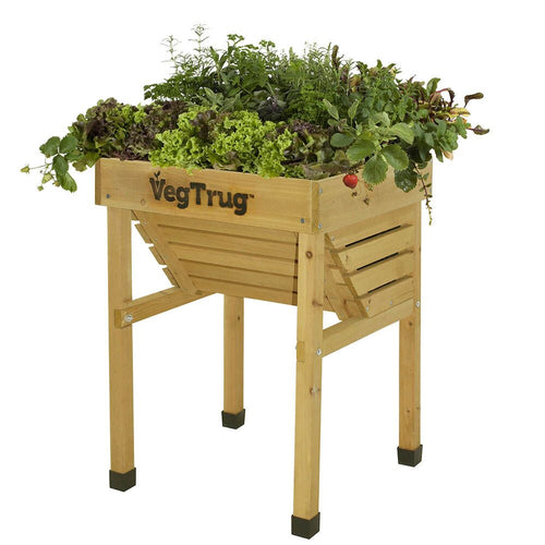 Veg Trug Kids Planter Natural Wood