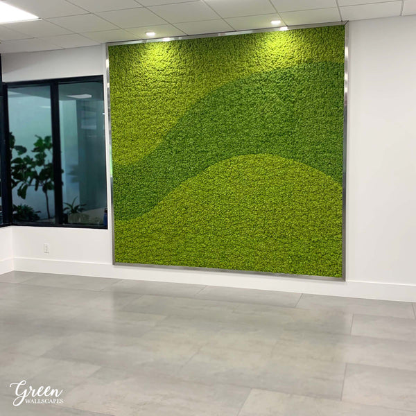 Preserved Moss Wall vs. Living Wall