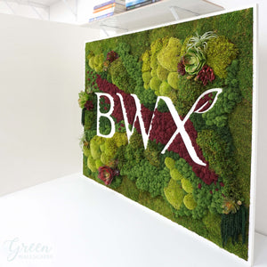 Moss wall with BWX logo and red reindeer moss for office decor