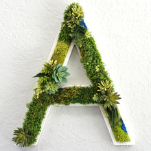 CREATE Succulent and Moss Lettering - Free Shipping! | Succulent Wall Art |Moss Art |  Succulent Wall Hanging | Succulent Living Wall