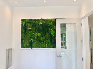 Fake Moss Wall Art | Vertical Green Wall | Plant Wall Art | Moss Wall Art for Sale | Faux Moss Wall | Fern and Moss Wall Art | Moss Art