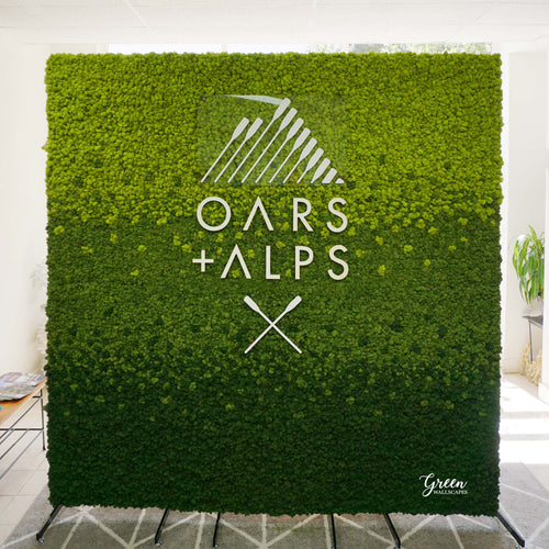 Preserved Moss wall art made for indoor use great use as office wall art. Professionally designed from green wall scapes