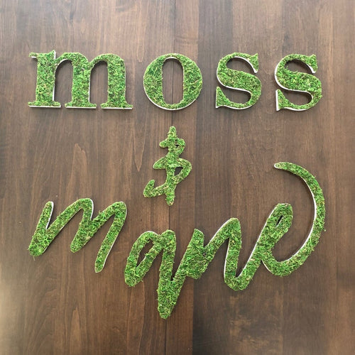 Custom Sheet Moss Logos | Moss Wall Art | Office Sign | Custom Logo Sign | Office Wall Decor | Restaurant Wall Art | Office Decor