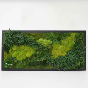 Lush Fern Botanical Wall Art - No Watering or Special Lighting!