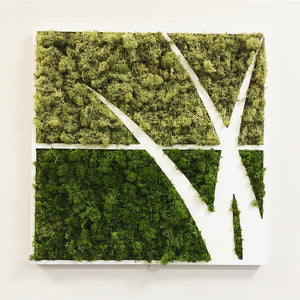 Custom Moss Logo or Lettering for Your Office or Retail Store! (Please Read the Description)