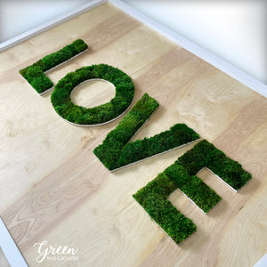 LOVE Preserved Moss Lettering - Free Shipping! | Framed Moss Art | Green Wall | Natural Wall Art | Plant Wall Decor| Indoor Moss Wall