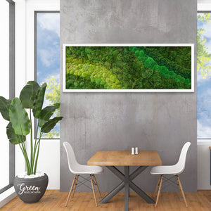 Mixed Moss Art Frame - Free Shipping! | Preserved Moss Wall | Indoor Moss Wall | Interior Moss Wall | Moss Wall Garden | Green Wall