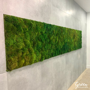 Reindeer Moss Wall Panels for your Office| Office Wall Art | Industrial Wall Art | Circle Wall Art | Preserved Moss Wall Art | Elegant Moss Wall Art | Unique Wall Art