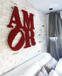 Amor Moss Lettering - Free Shipping! | Framed Moss Art | Green Wall | Natural Wall Art | Interior Moss Wall | Unique Wall Art