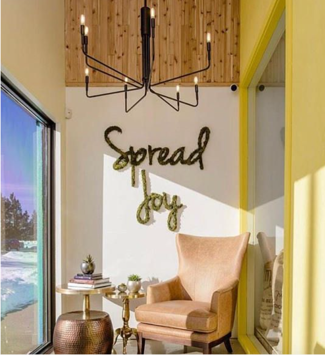 Spread Joy Moss Lettering - Free Shipping! | Office Wall Art |Natural Wall Art | Plant Wall Decor | Custom Moss Letters | Green Wall