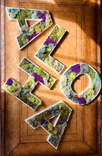 Preserved Moss Letters framed with high quality material. This moss design can be the letters of your choice