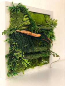 Bring the Forest Indoors - No-Maintenance Plant Painting - (Free Shipping)