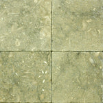 Seagrass Limestone 6x6 Tumbled Tile