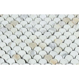 Calacatta Gold Marble Fan Shape (Raindrop) Honed Mosaic Tile - TILE AND MOSAIC DEPOT