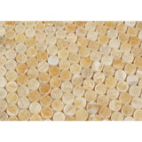Honey Onyx Penny Round Polished Mosaic Tile - TILE AND MOSAIC DEPOT