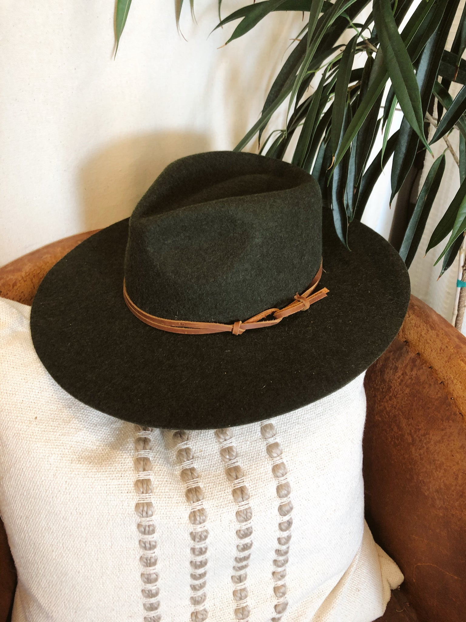 Logan Hard Brim Hat Olive