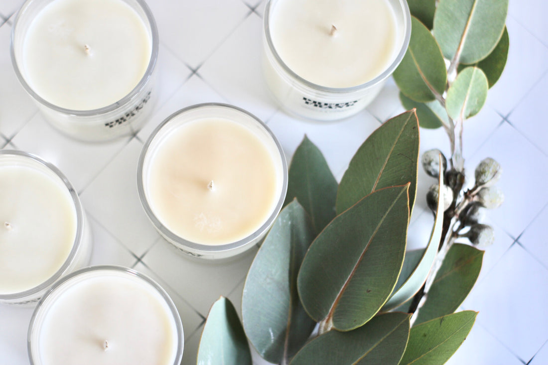 What goes into a Pretty Frank candle?