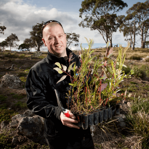 Planting trees in our Apple Isle to help tackle climate change