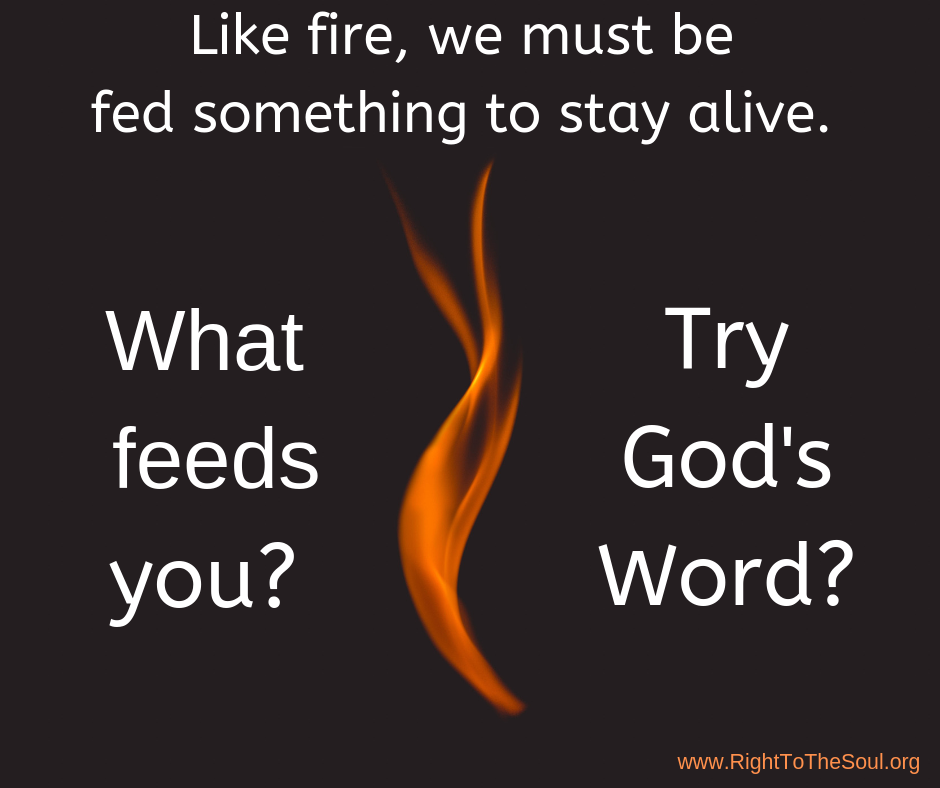 We are like fire. What feeds you?