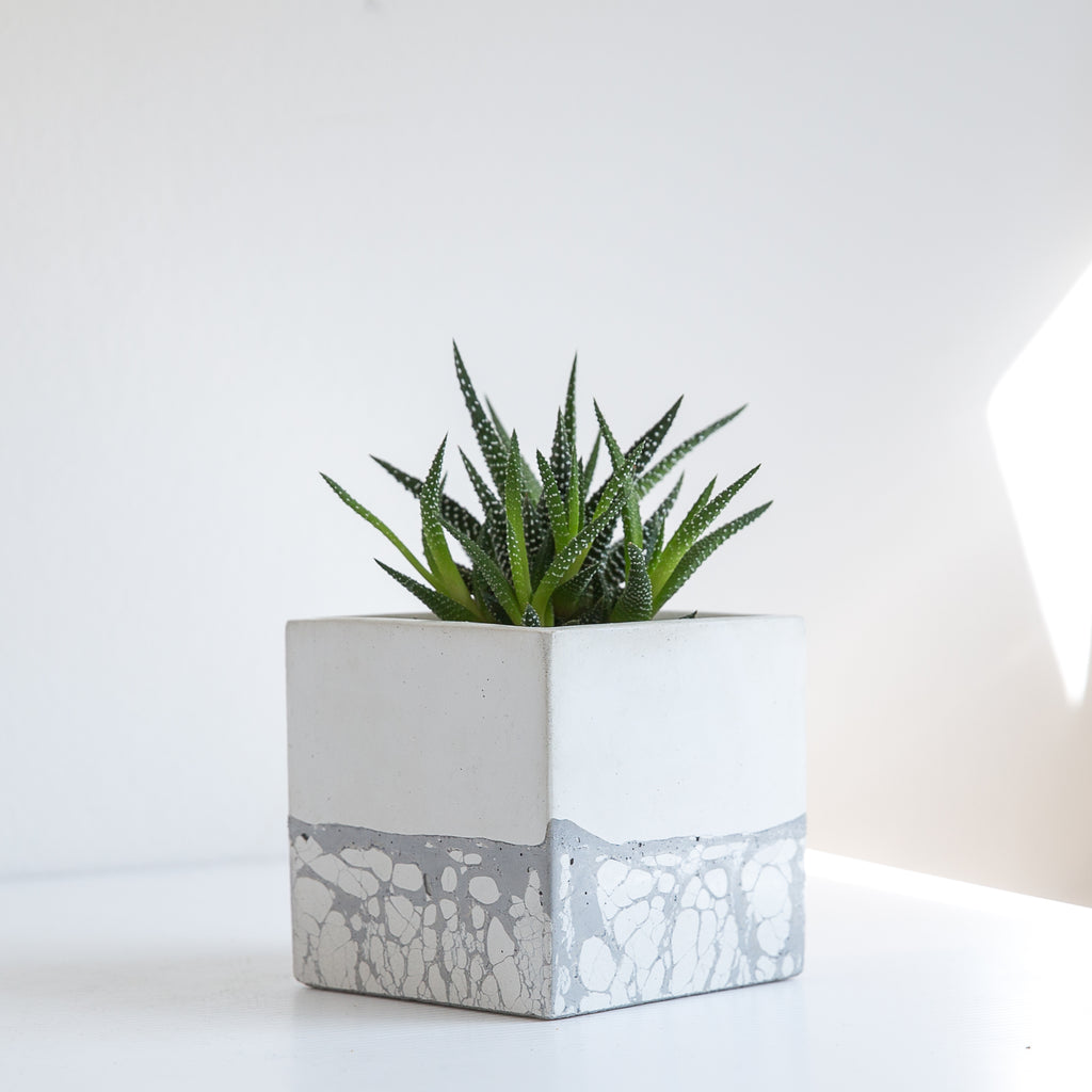 Perfect Imperfect Large Square Concrete Planter