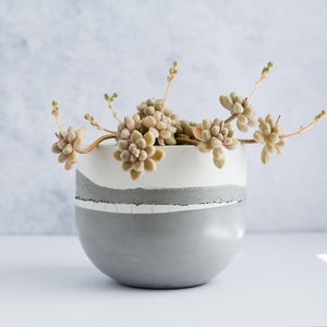 "Large Egg Concrete Planter 6"" - Two Tone / Muted Grey"