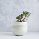 "Large Egg Concrete Planter 6"" - Two Tone / Sand Beige"