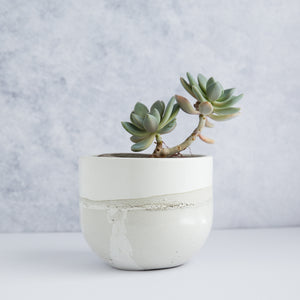 "Egg Planter 5.5"" - Two Tone / Sand Beige"