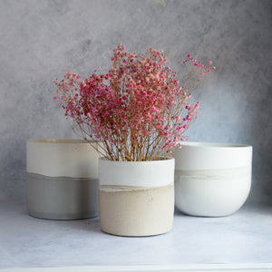 "Large Cylinder Planter 5.5""- Two Tone"
