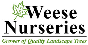 Tree nursery and tree farm in the Kingston, Napanee and Bath area