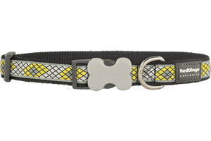RED DINGO Collar: Bucklebone Collar Monty Design Range (4 Sizes, 3 Colours)