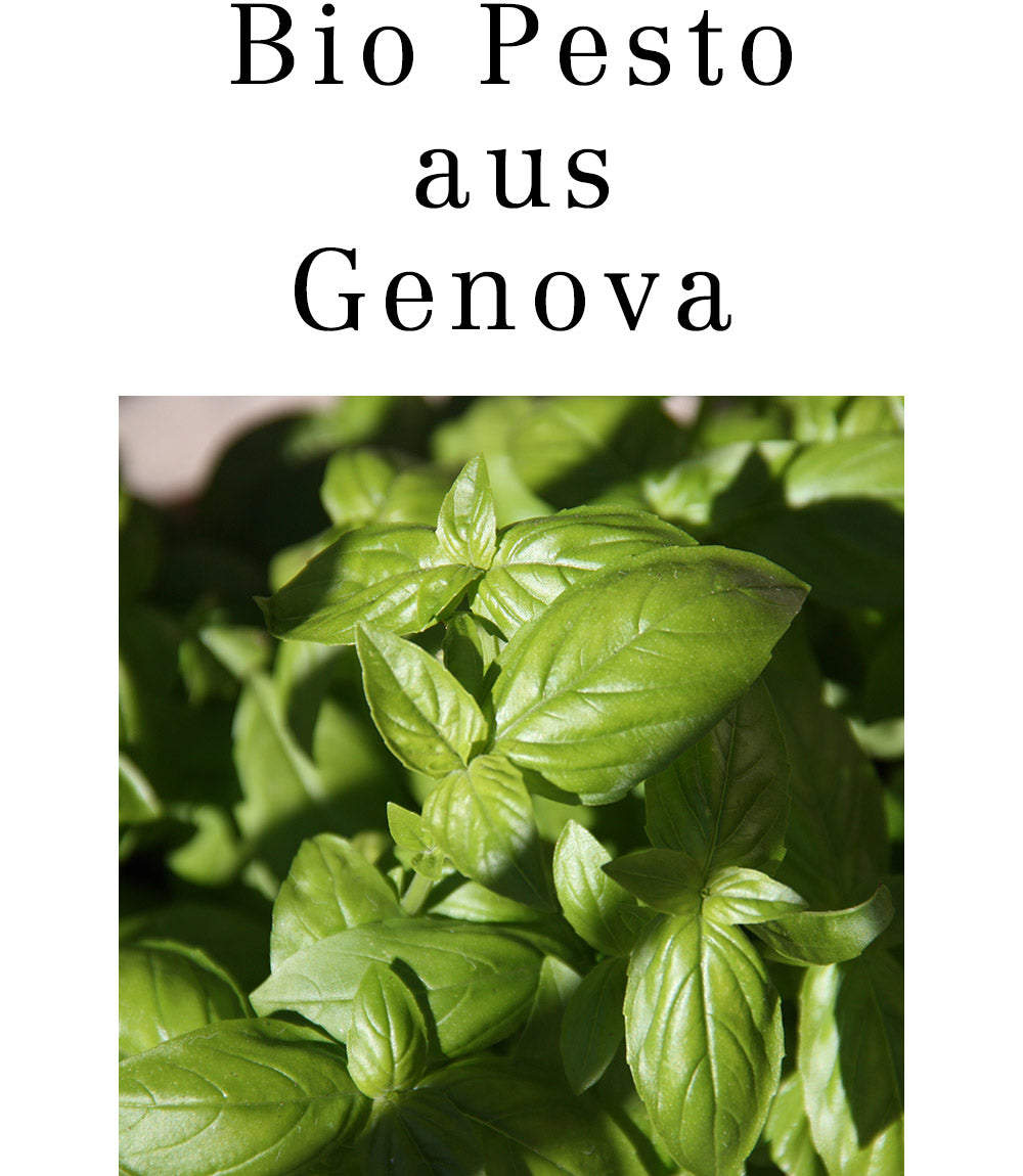 Bio Pesto aus Genua