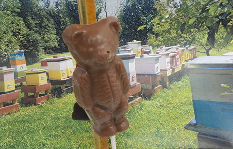 Honey Bear Pop & Bee Hive
