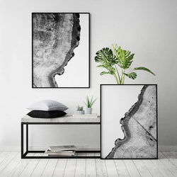 Black White Tree Rings Canvas
