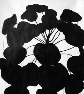 Maureen Nathan 'Pilea' charcoal on fabriano (unframed) Broth Art